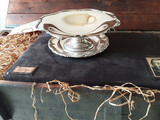 Silver Plated Bowl   AMF8WR254